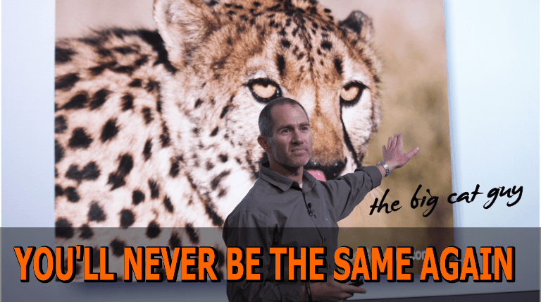 Motivational Speakers Youtube Channel Lorne Sulcas The Big Cat Guy